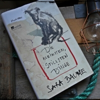 Sara Baume - Die kleinsten, stillsten Dinge