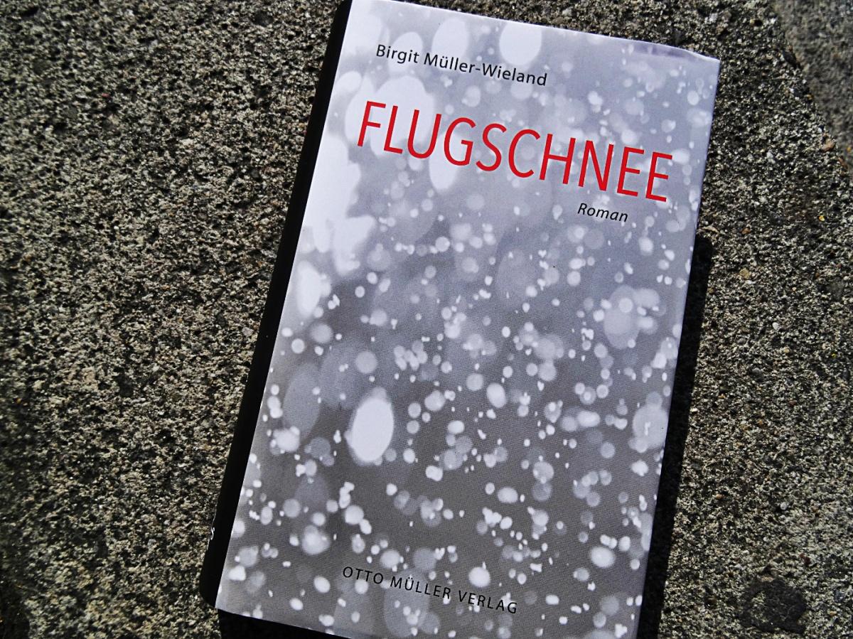 Birgit Müller-Wieland - Flugschnee