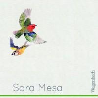 Sara Mesa - Quasi